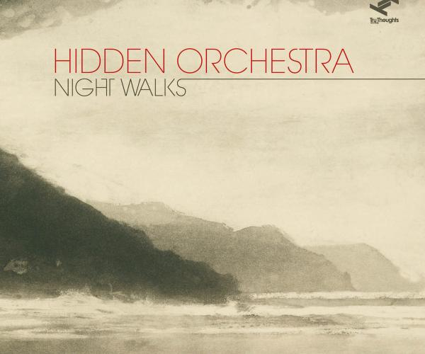 Night Walks par Hidden orchestra
